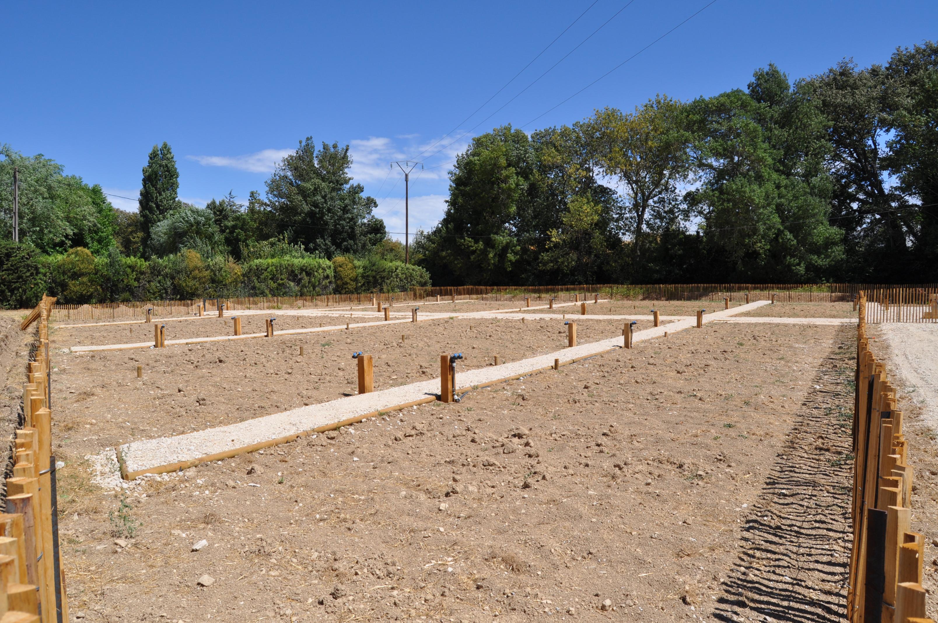 Photo des travaux en cours des jardins partagés montrant les parcelles déjà dessinées