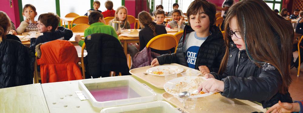 Visuel d'enfants à la cantine triant leur nourriture pour lutte contre le gaspillage