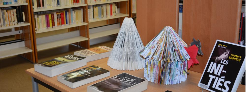 Photos de 2 livres pliés sur une table avec des livres