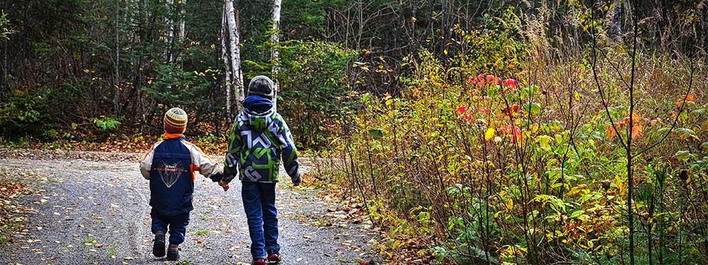 Photo de 2 enfants se tenant main dans la main se promenant dans les bois
