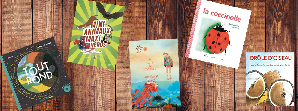 Sélection de 5 livres pour enfants de la bibliothèque pour le mois de décembre 2016 posés sur un fond bois