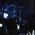 Photo d'un jardin illuminé avec écureuil, guirlandes, cerf, ours polaire…