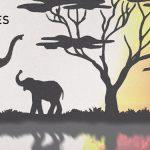 Photo de l'album de voilaaa soundsystem montrant 2 éléphants dans leur habitat naturel entourés d'un lac et de baobabs