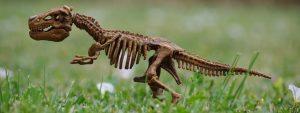 Photo représentant un squelette de dinosaure sur une pelouse