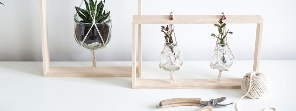 Photo d'une création do it yourself avec des plantes et un support bois