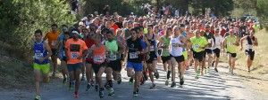 Marathon de Venelles