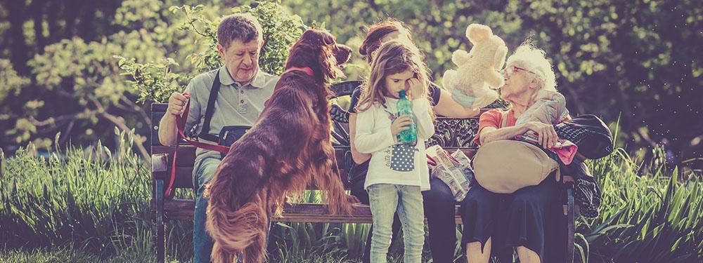 Photo d'une famille assise sur un banc avec : le grand-père, la grand-mère, la femme, la fille et le chien dans un moment de famille