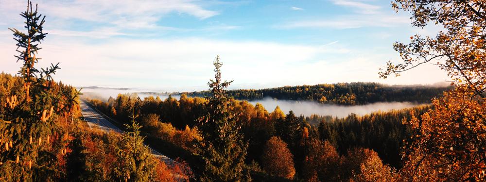 Photo d'une vue d'un lac en automne