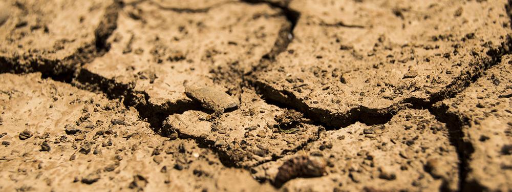 Photo d'un sol craquelé par la sécheresse