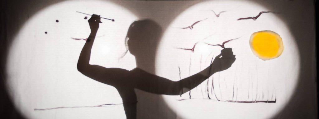 Photo de volatiles en jeu d'ombre