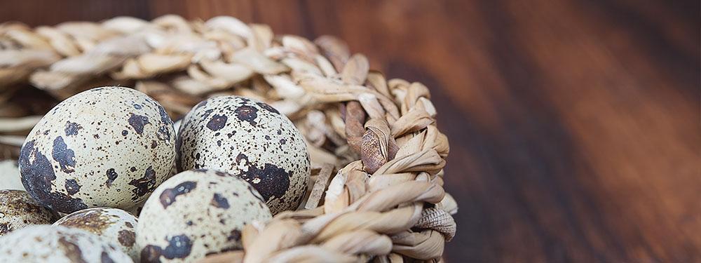 Photo d'un panier en osier rempli d'oeufs posé sur une table en bois