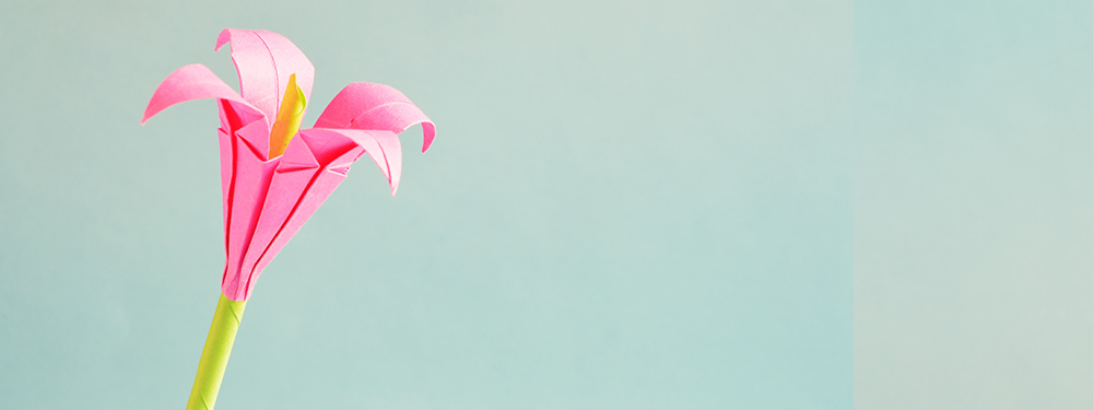Photo d'une fleur rose en origami sur fond bleu