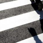 Photo d'un passage piétons avec seulement les ombres des passants