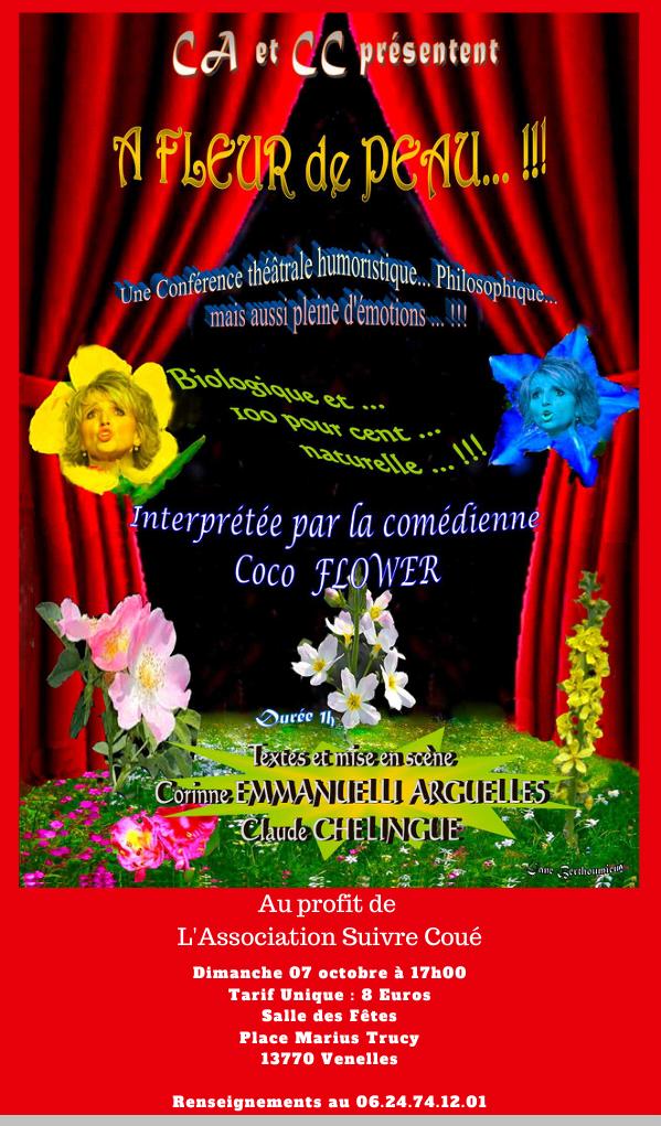 Affiche spectacle à fleur de peau