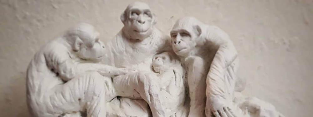 Sculture des 4 bonobos d'Angelo Pierlo