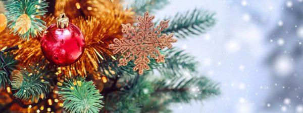 Photo d'un sapin de Noël