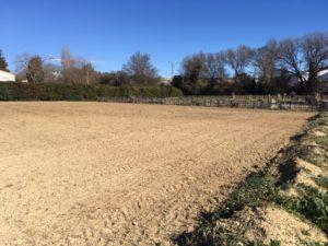 Photo de la prairie fleurie située sur une parcelle proche du Potager partagé, avenue Madeleine Bonnaud, venant d'être semée