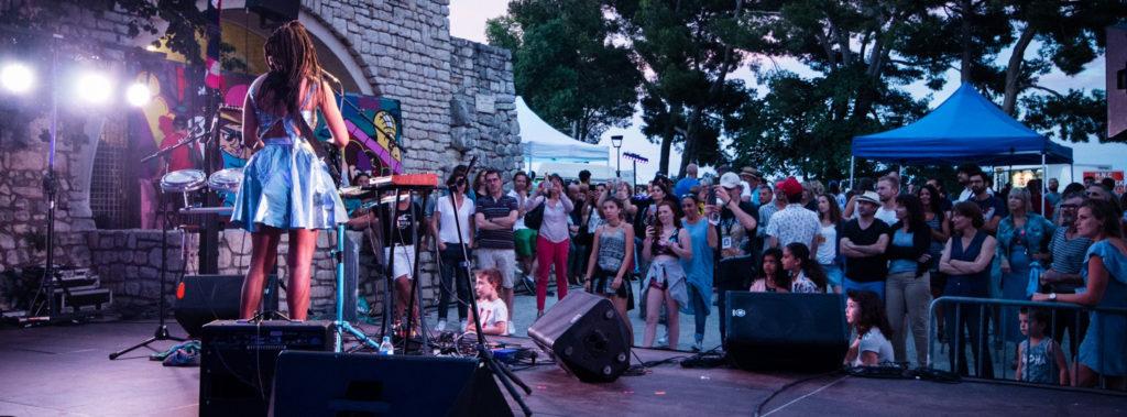 Photo représentant une foule de spectateurs devant un concert en plein air à la tombée de la nuit