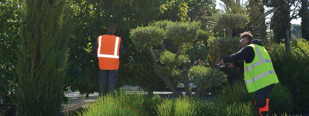 Photo de 2 agents techniques qui entretiennent les espaces verts