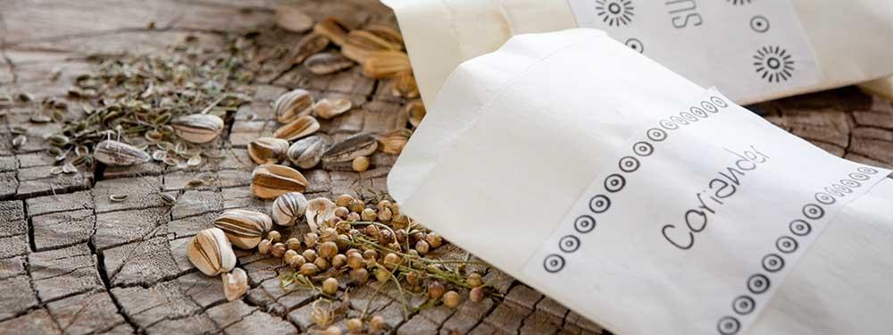 Photo de 2 sachets de graines éparpillés sur une table en bois