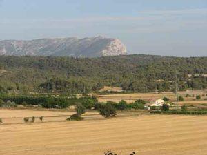Photo de l'espace agricole de Venelles