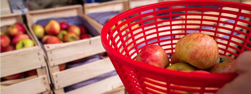 Photos d'un panier de pommes devant une caisse de pommes