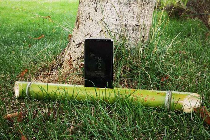 Photo représentant un smartphone posé sur un bambou au pied d'un arbre