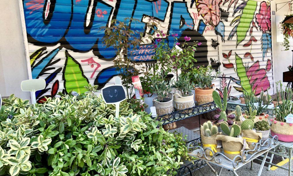 La devanture d'A Fleur de pots s'est refait une beauté. Bravo à Arpe pour cette réalisation.