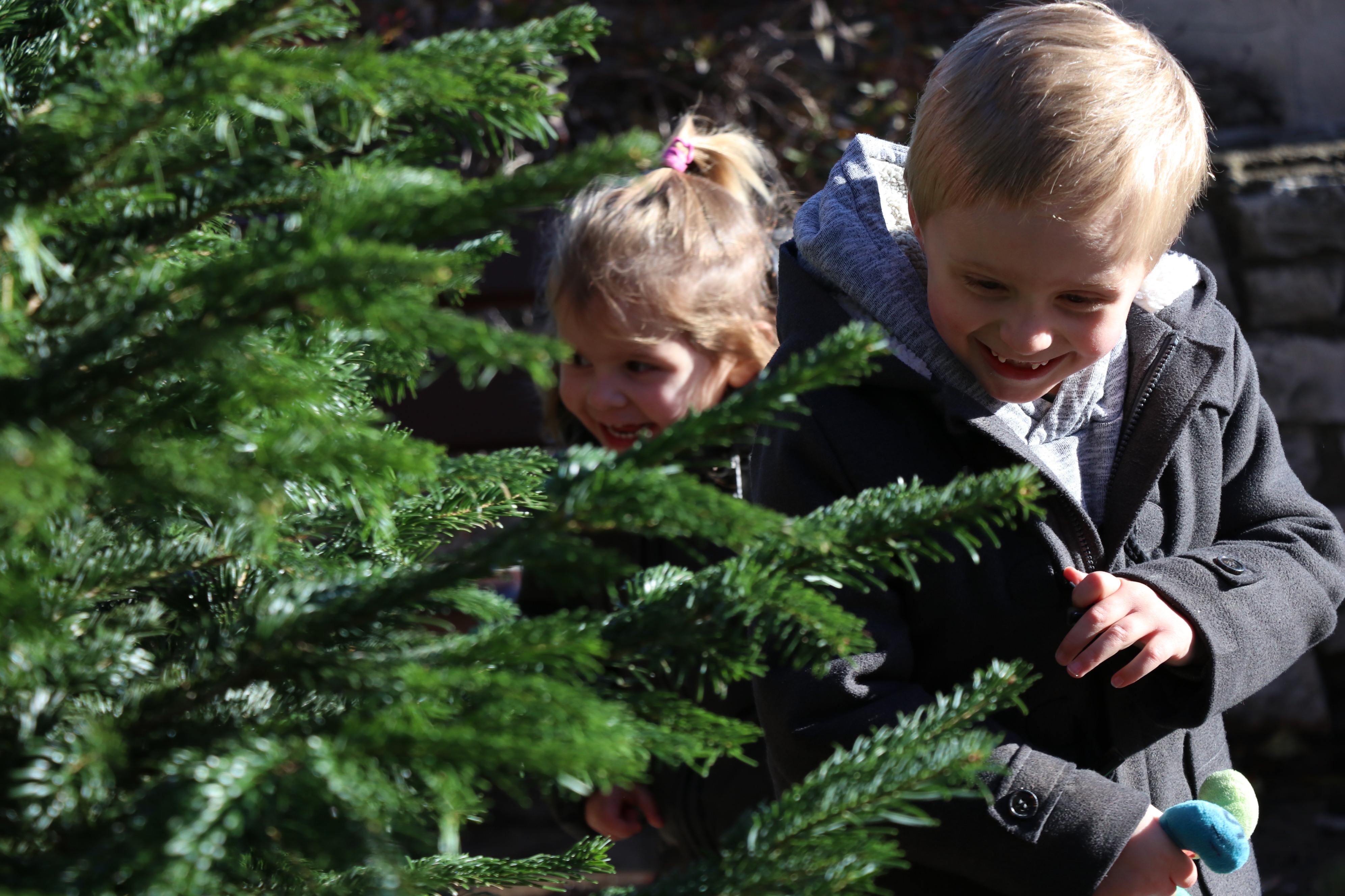 Photo de 2 enfants en train de se cacher dans la forêt enchantée